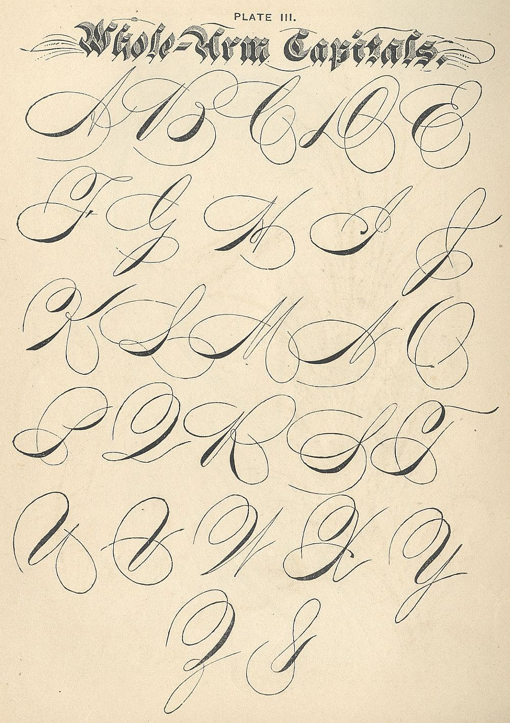 Penmanship examples ames historical society Handwriting calligraphy